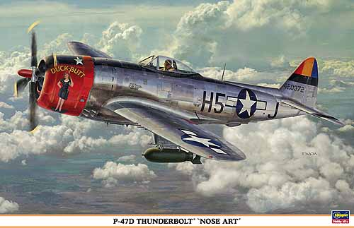 P47D Thunderbolt Bubbletop by Marty Sanford Tamiya 172